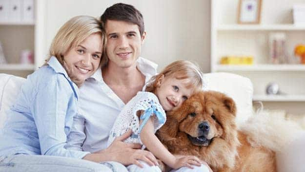 Wills & Trusts dog-young-family Direct Wills Herne